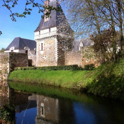 Douves - château de Goulaine