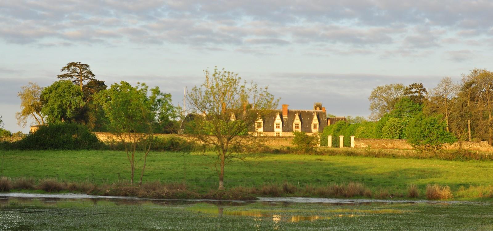château vue du marais de goulaine - Thomas Marlot